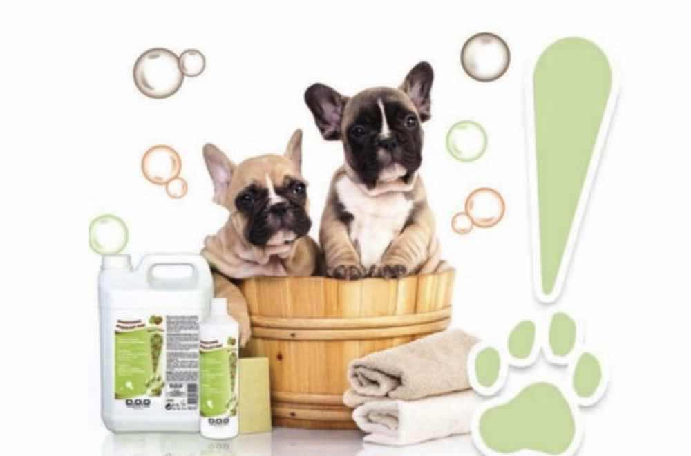Dog Generation linea cosmetica