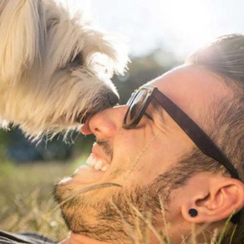 Giornata-mondiale-degli-amanti-del-cane-instagram