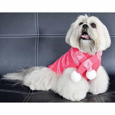 Maglione-per-cani-rosa-cane