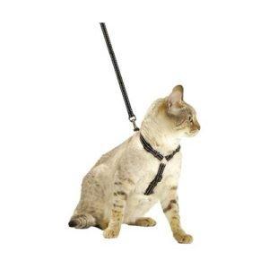 Set-di-guinzagli-per-gatti