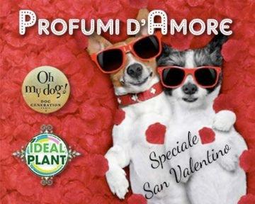 PROFUMI-D'AMORE